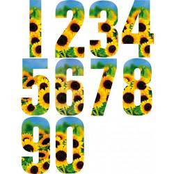 Numerotarra 0-9 kukka